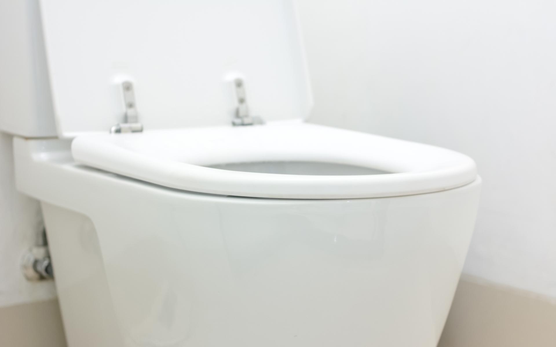 New Orleans Toilet Repair